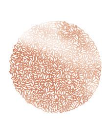 Lugar americano minsk rosé gold de pvc 38 cm bon gourmet